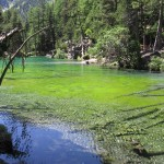 Lac vert, vallée étroite (2)