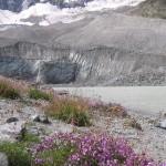 lac du glacier d'Arsine (2)