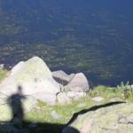 lacs de Cristol