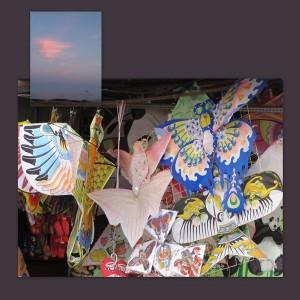 shanghai kites (1)b