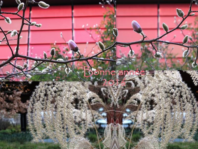 branly jardins bonne année b